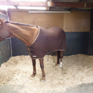 Equine Bedding